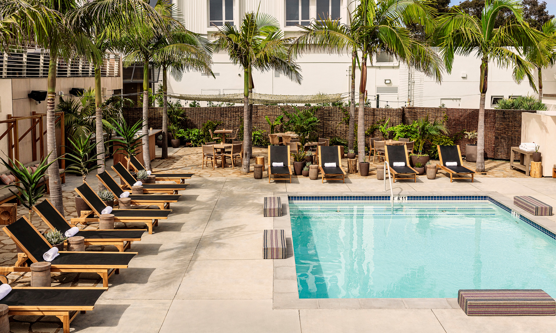 Pool surrounded by chaise lounge chairs and palm trees